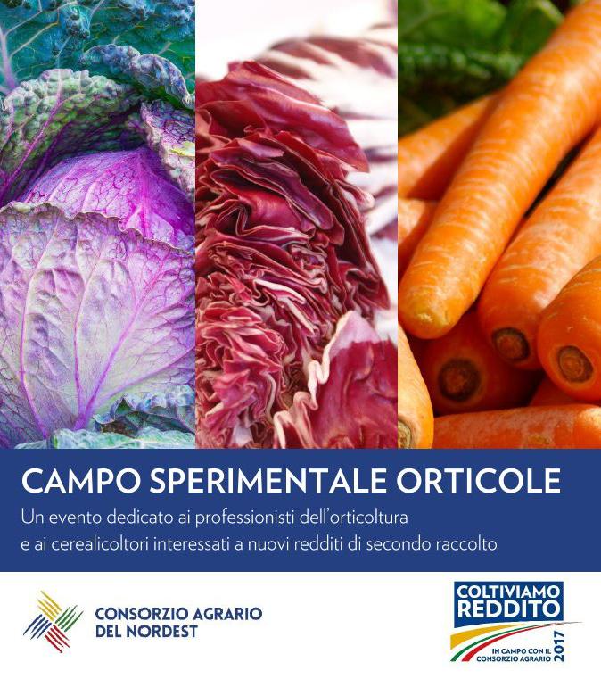 COLTIVIAMO_REDDITO_campo_orticole_fb